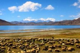 Lhasa Yamdrok Camping tour